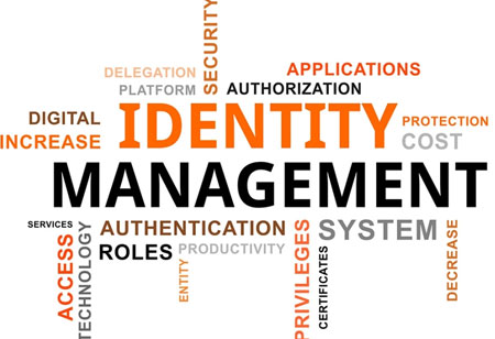 In What Ways Businesses Can Identify the Right Identity Management Solution?